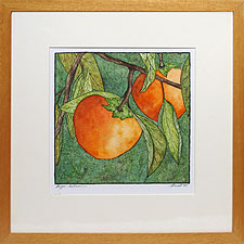 Persimmon by Thayer Tomlinson