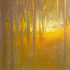 Forest Light #5 by Hugh Roberts